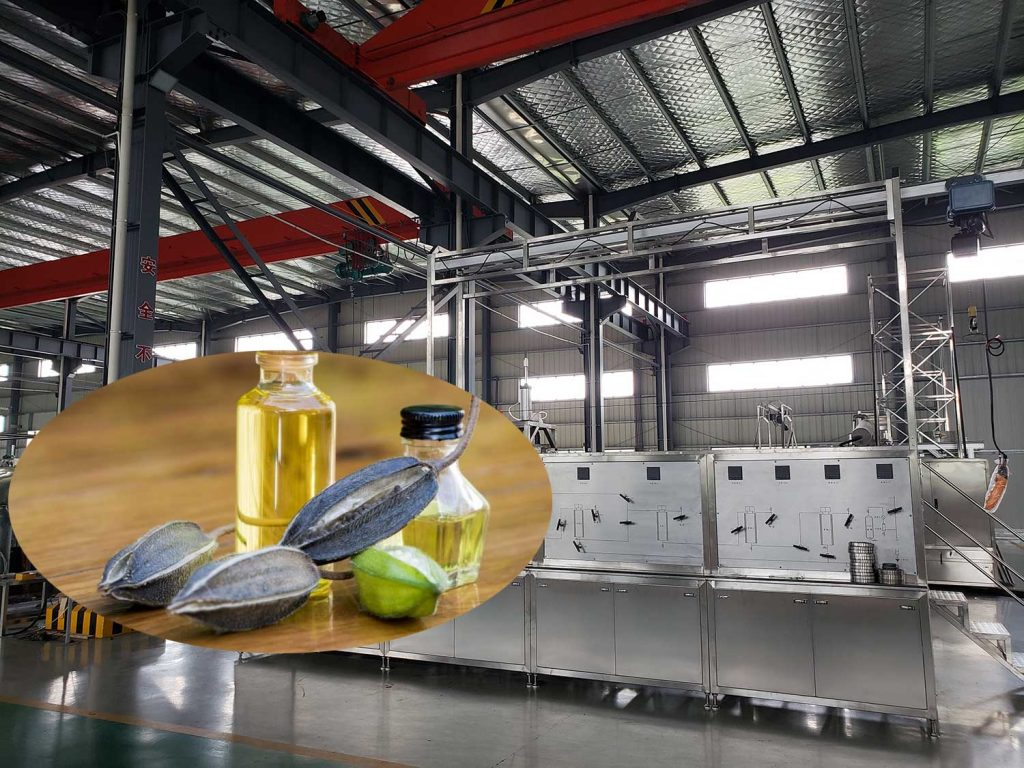 Supercritical co2 extraction ambrette seed oil