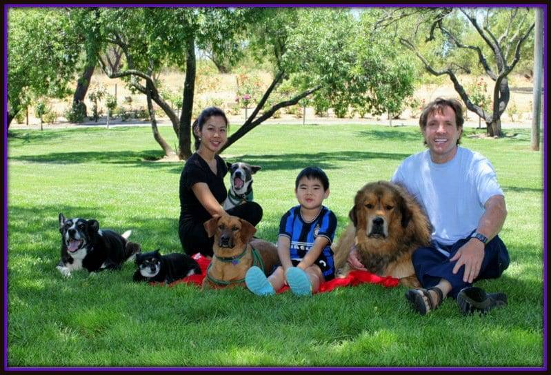 best dog training sacramento