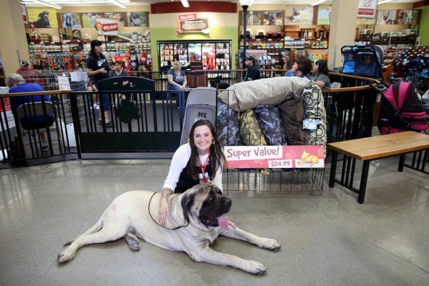 Emotional Support Animals Sacramento