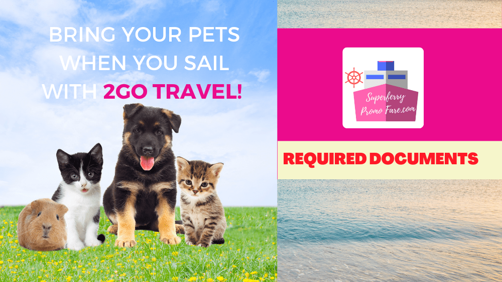 2go brings pets requirements