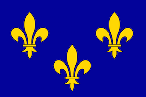 French Fleur-de-lis Flag