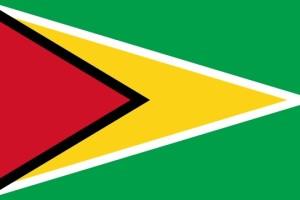 guyanese-flag-medium