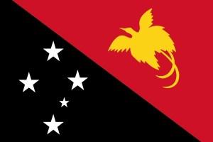 papua-new-guinean-flag-medium