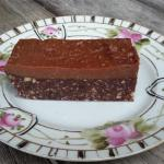 Choc Fudge Protein Bar