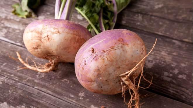Rutabaga nutrition