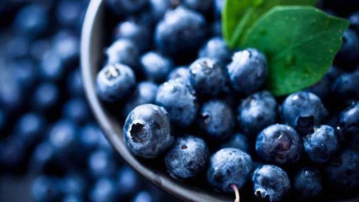 Image result for blueberry