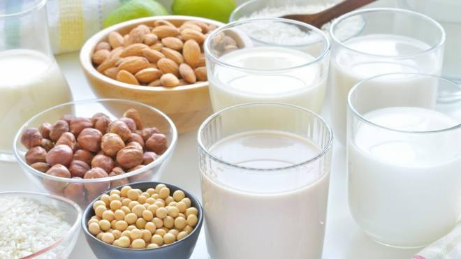 milk vs non dairy milk