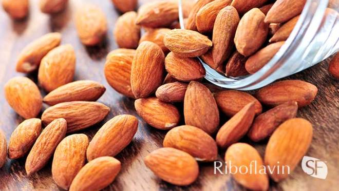 Riboflavin Facts