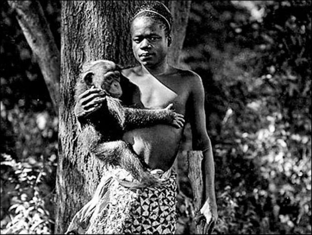 Kongo'lu Ota Benga 1906 yılında Bronx hayvanat bahçesindeydi. Kucağında maymunlarla dolaşmaya zorlanıyordu.