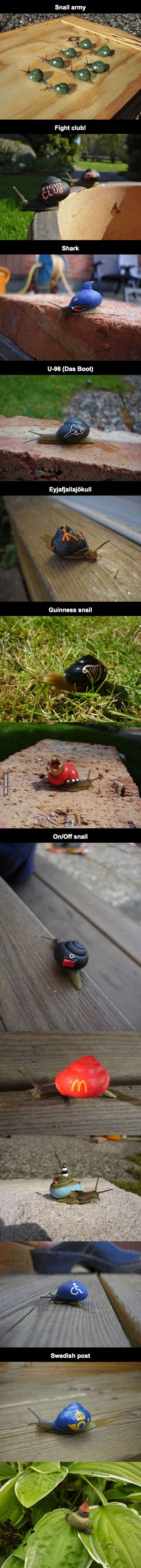 A-Swedish-Guy-Lost-His-Job-Then-He-Took-Up-Snail-Painting-As-A-Hobby