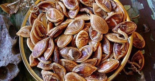 İçerisindense bu 800 yıllık tohumlar çıktı.