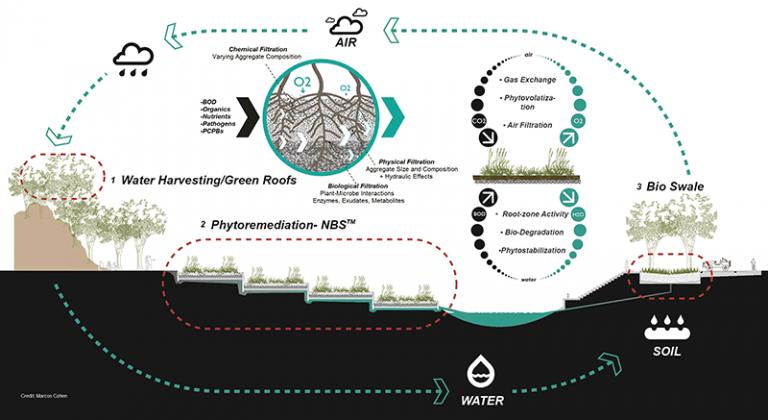 ayala-infographic-768x420