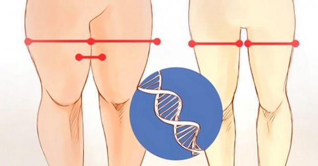 Günde sadece 12 dakikalik egzersizle dayanılmaz bacaklara sahip olacaksınız.