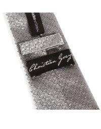 Fifty Shades of Grey - Christian Grey Silver Tie