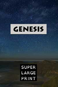 KJV: Psalms: Book 2 - Super Large Print