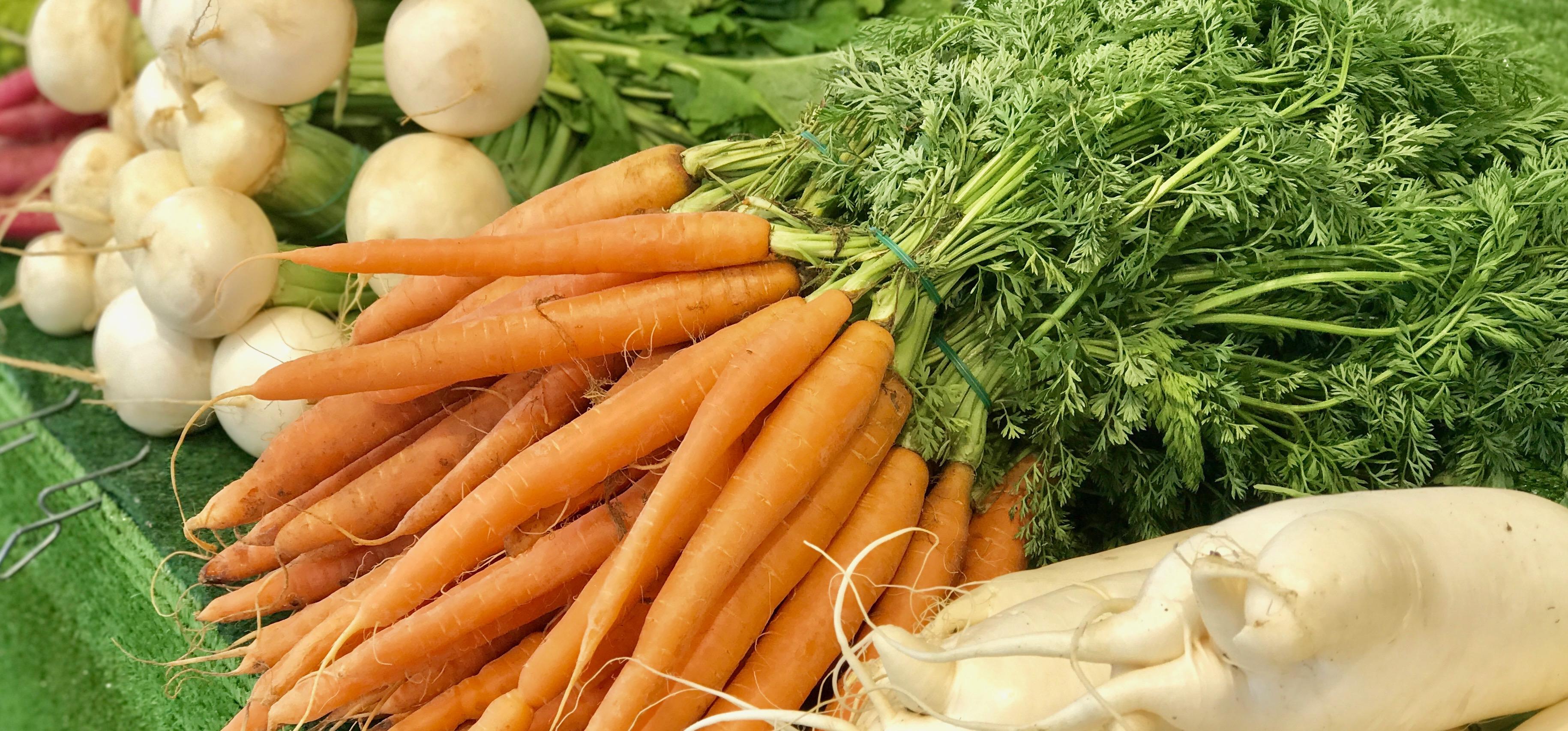 """Food-Trend: """" Nachhaltigkeit"""" 2. Teil : Bio-Siegel"""