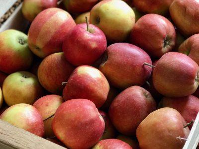 Fructose: Ist Obst wirklich so gesund?