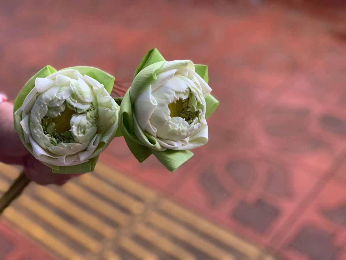Weltreise: Bangkok Lotusblume geöffnet