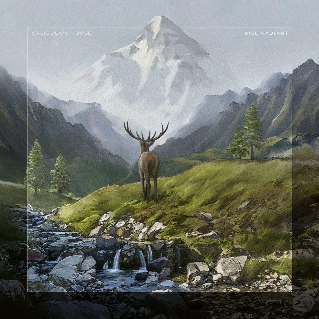 Rise Radiant album art
