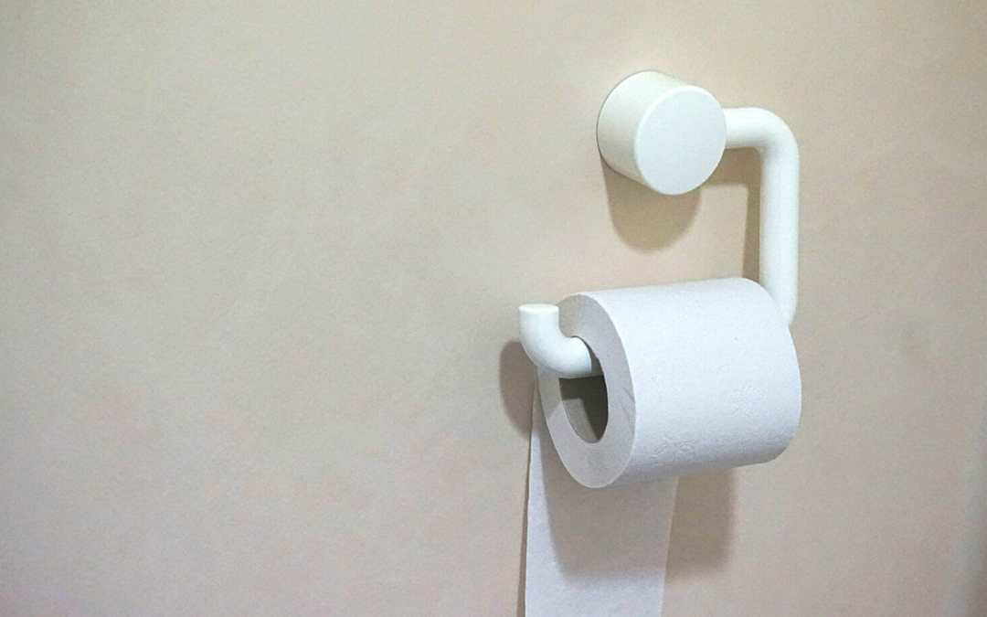 """The """"Mommy Potty"""" and Other Secrets to Toilet Training On-The-Go"""