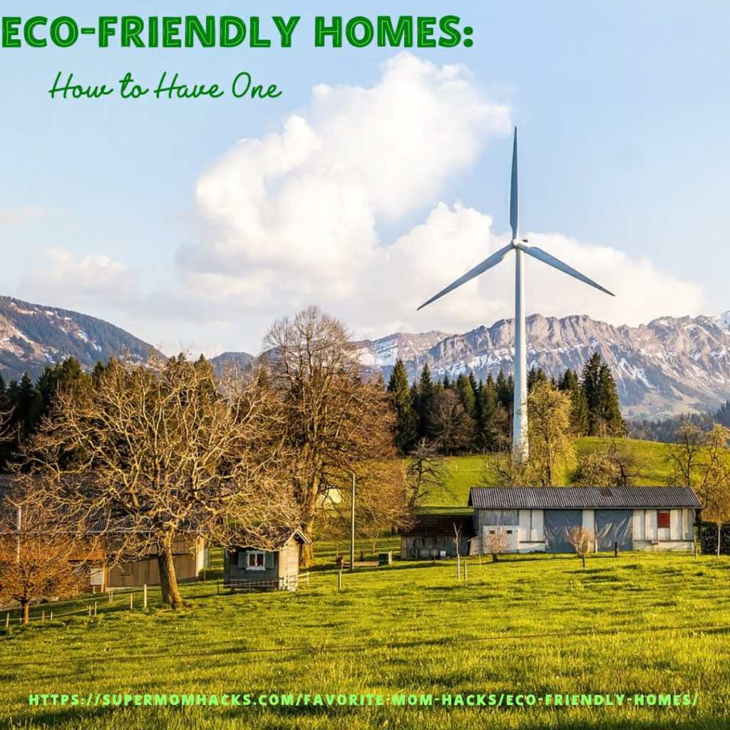 Ever been intrigued by eco-friendly homes? Wondering how to begin shrinking your family's footprint? This post gives you tips to help you get started.