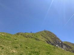 Sulla cresta erbosa che porta alla cima