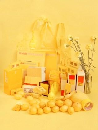 Sara Cwy yellow