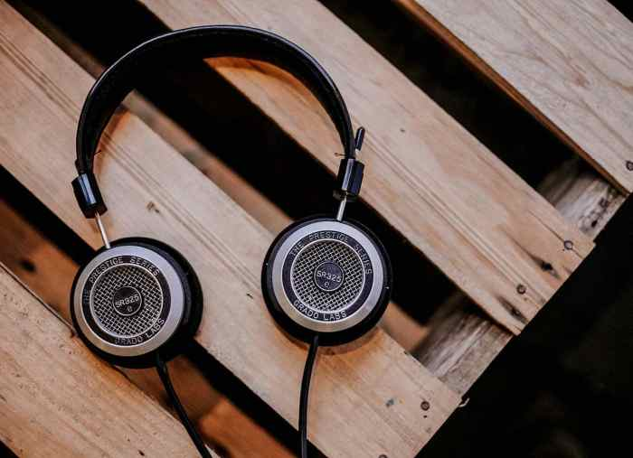 Premium Headphones