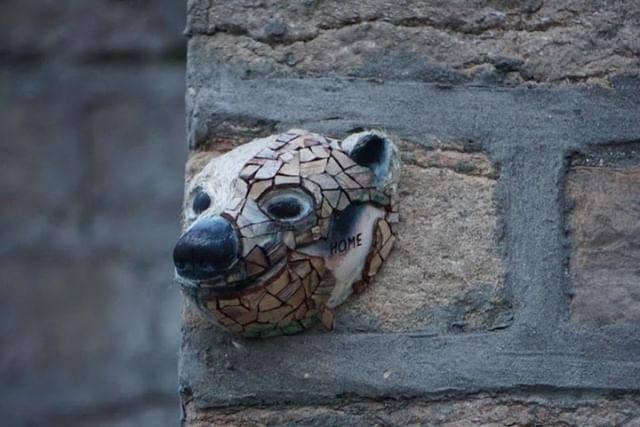 Tête d'ours collé sur un pan de mur