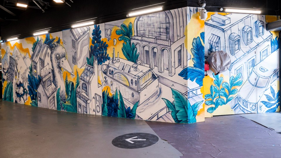 Fresque murale de street art / art urbain à Lyon