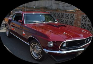 Red Mustang oval 892x608