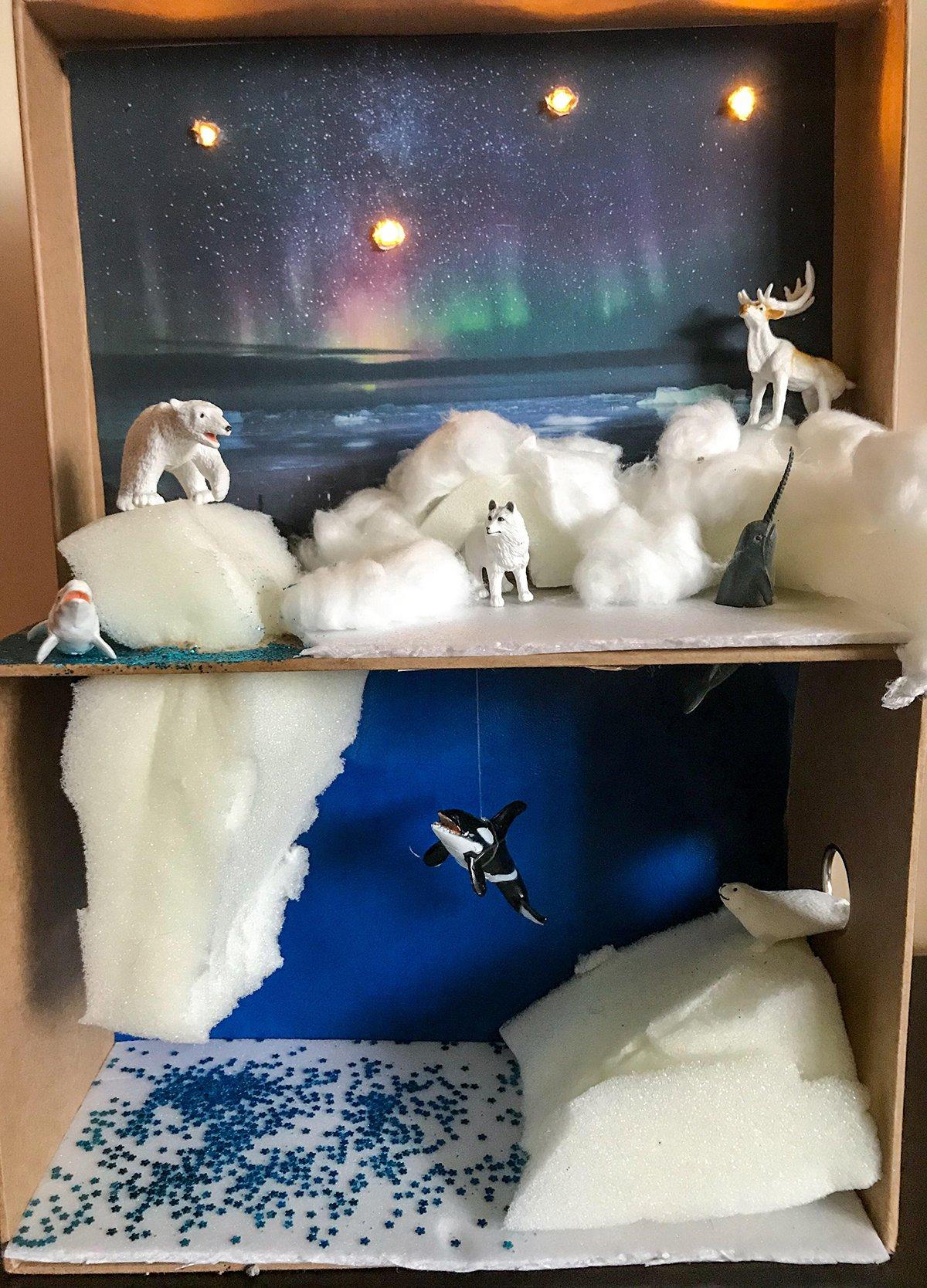Arctic Habitat Diorama
