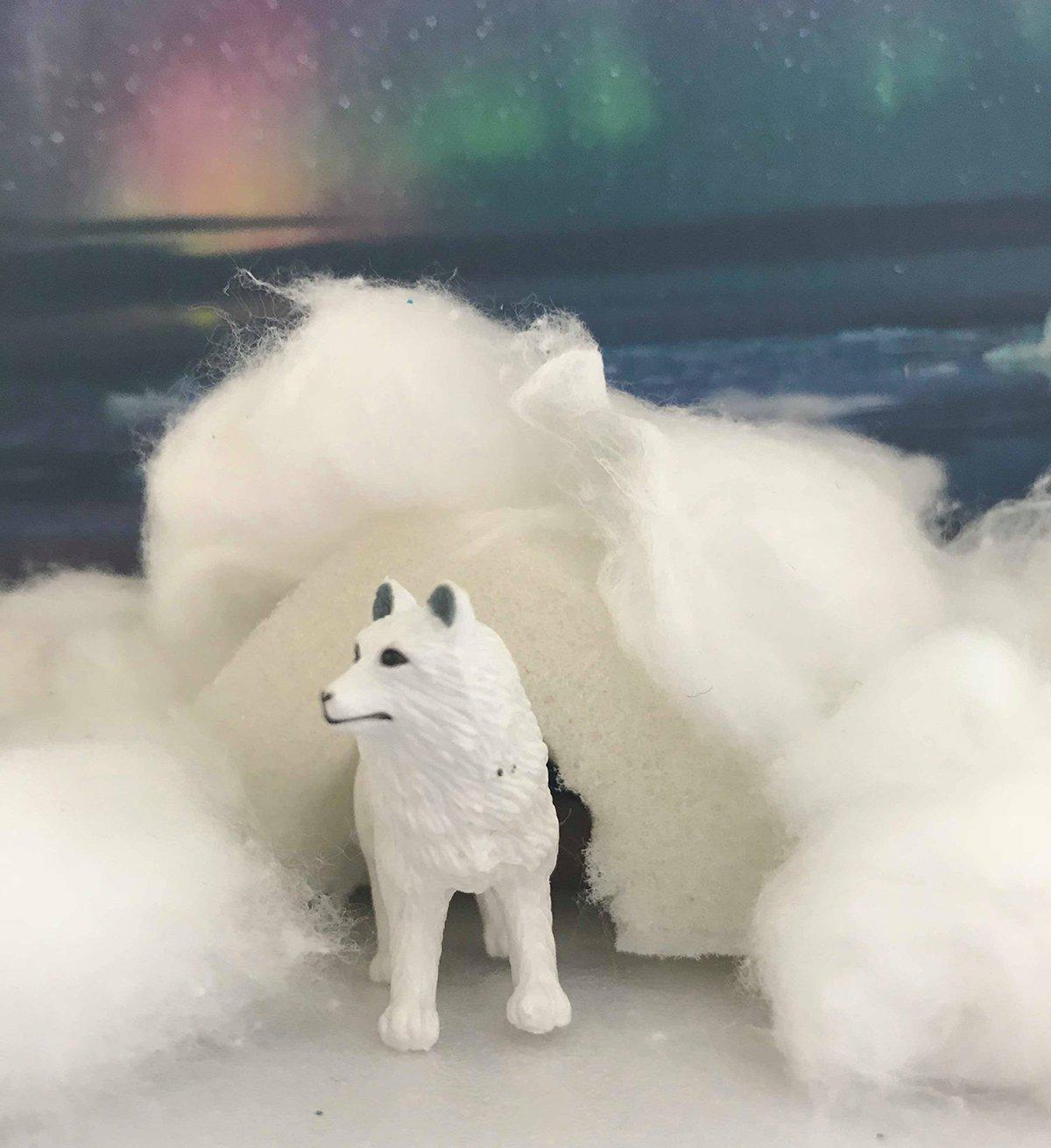 Snowy Owl Diorama Ideas