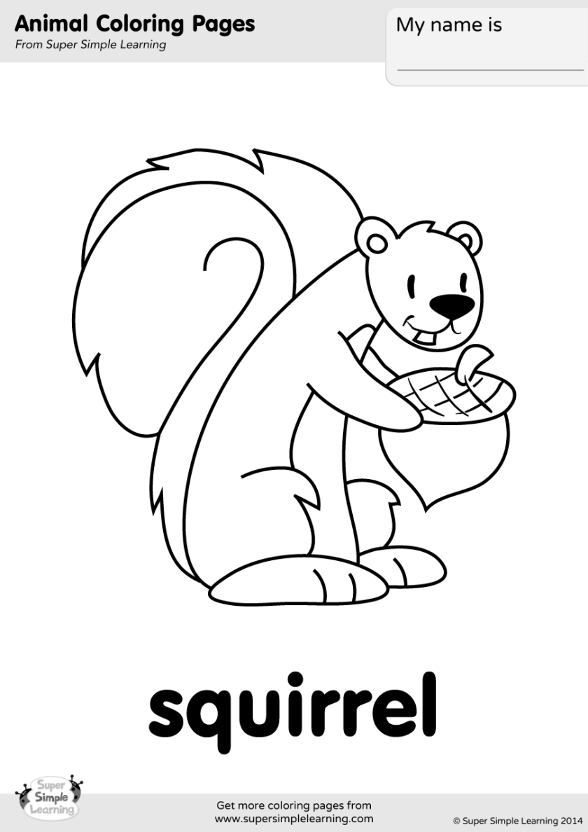 squirrel coloring page  super simple