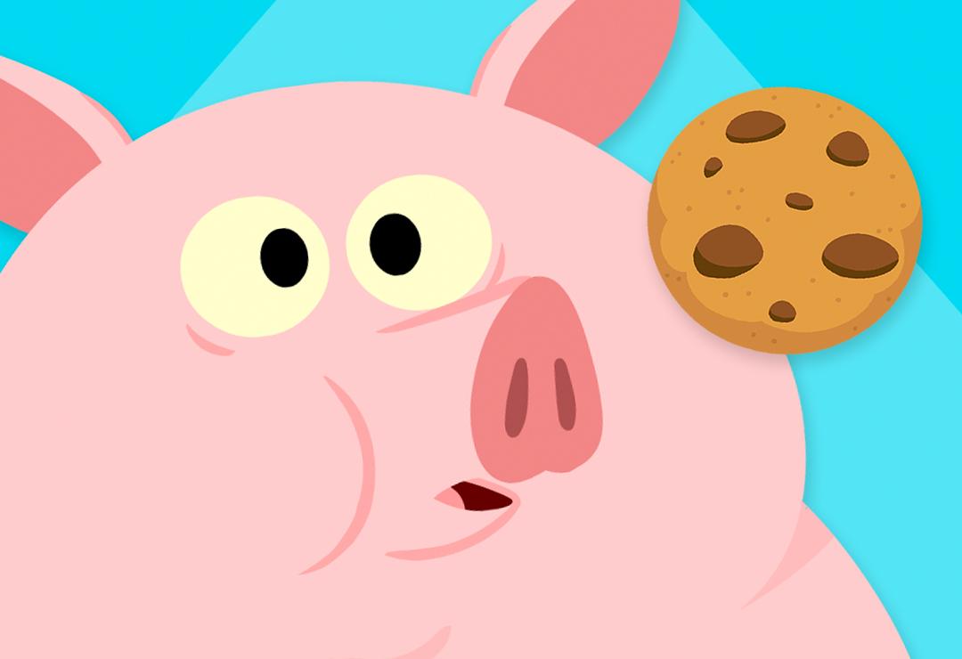 All Parts Pig