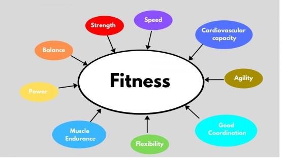Components of fitness. Functional Fitness.