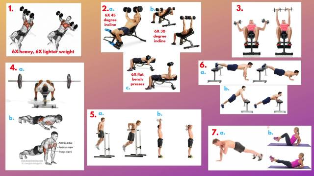 Incline Dumbbell Press. Dumbbell Bench Presses. Incline Dumbbell Flyes. Narrow grip barbell press. Triceps Pushups. Triceps Dips. Triceps overhead extension. Incline pushups. Decline Pushups. In and outs abs. Plank taps