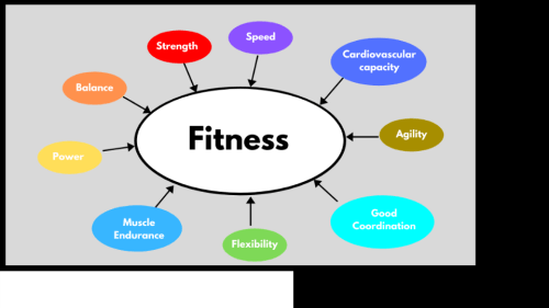 Components of fitness. Functional Fitness. Whole Body workouts. Super Soldier Project.
