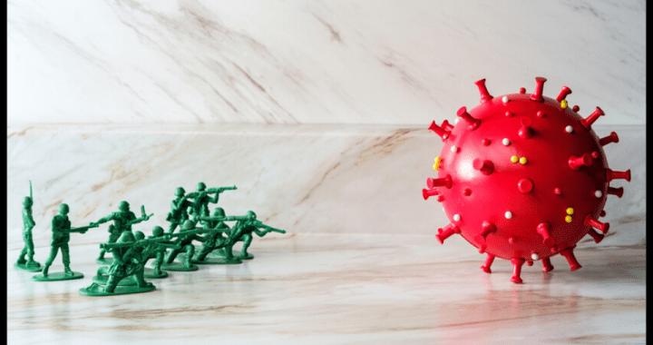 Bulletproof Immune System