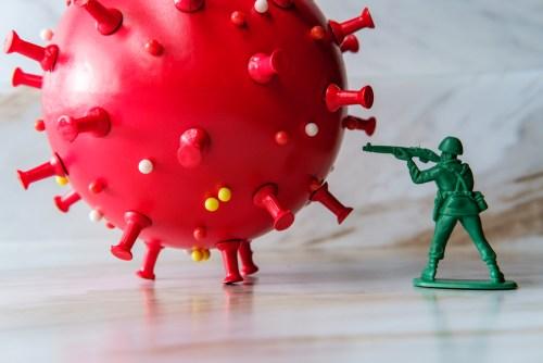 Bulletproofing Immune System. Immune system facts.