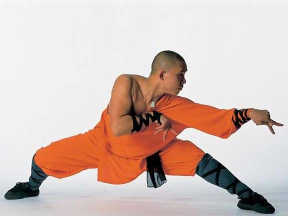 Praying Mantis Kung Fu. Martial Arts. Martial Arts of the World.