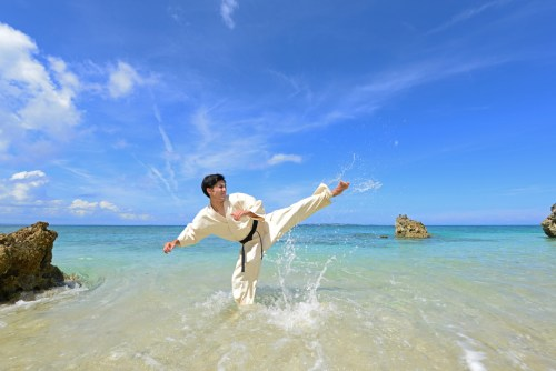 Okinawan Karate. Martial Arts. Fighting Arts. Unarmed combat.