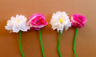 tissue-paper-flowers346-jpg-20151022110133.jpg-q75,dx330y198u1r1gg,c--