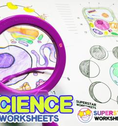 Science Worksheets - Superstar Worksheets [ 768 x 1024 Pixel ]