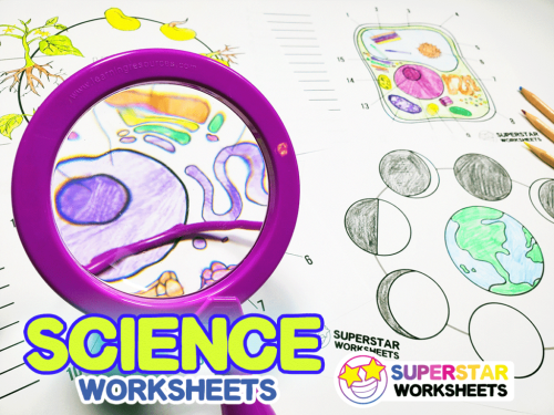 small resolution of Science Worksheets - Superstar Worksheets
