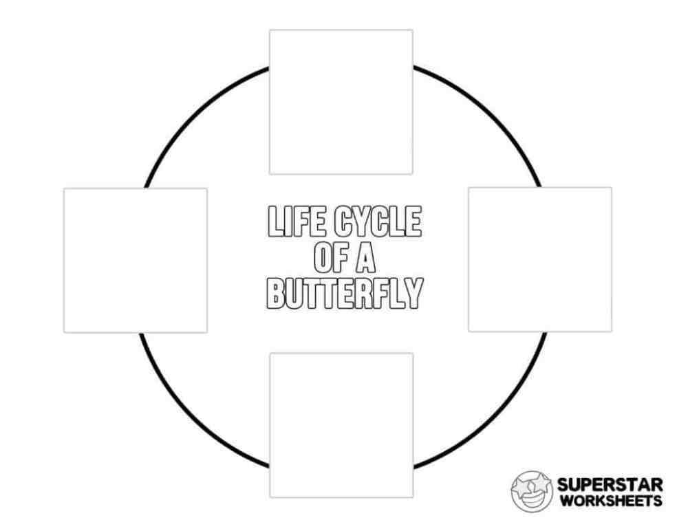 medium resolution of Butterfly Worksheets - Superstar Worksheets