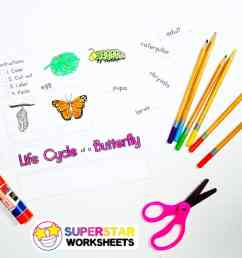 Butterfly Worksheets - Superstar Worksheets [ 796 x 1024 Pixel ]