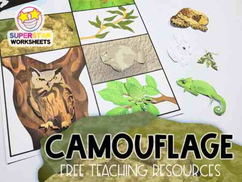 small resolution of Animal Camouflage Worksheets - Superstar Worksheets