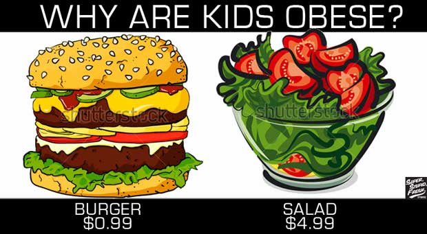 WHY ARE KIDS OBESE? Because the Government subsidizes un healthy foods.