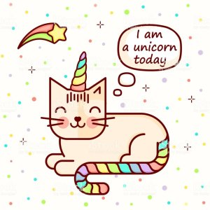 I am a unicorn cat